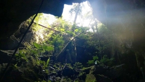 New cave discovered in Phong Nha - Ke Bang National Park