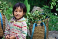 Minority people in Sapa in the eyes of young tourists