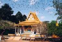 Doi Pagoda – One of the best tourist attractions in Soc Trang